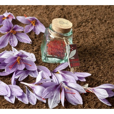 Saffron Threads - Collina...